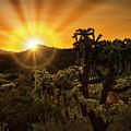 Sunrise Done With An Arizona Flare by Saija Lehtonen