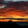 Sunrise Drama By The Sea by Dianne Cowen