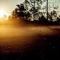 Sunrise Effect by Eric Christopher Jackson