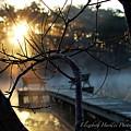 Sunrise by Elizabeth Harllee