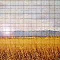 Sunrise Field 1 - Mosaic Tile Effect by Steve Ohlsen