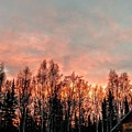 Sunrise Fire  by Joshua Stoker