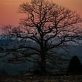 Sunrise From Bolton Ma by Ronald Raymond
