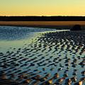 Sunrise In Gold by Dianne Cowen