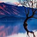 Sunrise In Slovenia by Angele Attard