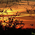 Sunrise In Tennessee by Ericamaxine Price