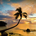 Sunrise by Jerril Mathew