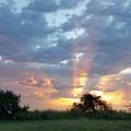 Sunrise by Kimberly Hammontree
