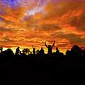 Sunrise Landscape In Tanzania by Marek Poplawski
