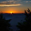 Sunrise Myrtle Point by Jemmy Archer