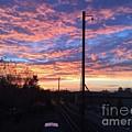 Sunrise Nv15-02 by Devon Fenton