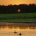 Sunrise On A Gettysburg Duck Pond by Bill Cannon