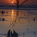 Sunrise On Boneyard Beach by Rick Berk