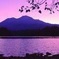 Sunrise On Lake Shasta by Sarah Avignone