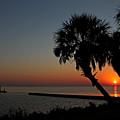 Sunrise On Pleasure Island by Judy Vincent