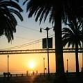 Sunrise On The Bay by Joshua Sunday
