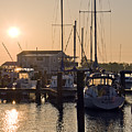 Sunrise On The Eastern Shore Of Maryland by Brendan Reals
