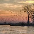 Sunrise On The Platte by Susan Rissi Tregoning