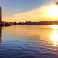 Sunrise On The Tidal Basin by Olivier Le Queinec