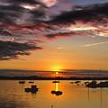 Sunrise Over City Island by Pat Carosone