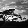 Sunrise Over Fort Salonga B W by Rob Hans