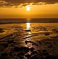 Sunrise Over The Sea by Svetlana Sewell