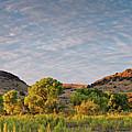 Sunrise Panorama Of Cottonwoods Along Limpia Creek - Davis Mountains West Texas by Silvio Ligutti