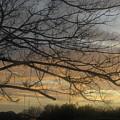 Sunrise by Paul Pettingell