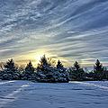 Sunrise Pines by Bonfire Photography
