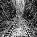 Sunrise Rails Black And White Vertical Panorama by Debra and Dave Vanderlaan