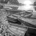 Sunrise Rowboats  In Black And White by Debra and Dave Vanderlaan