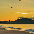 Sunrise Seascape With Mountain And Birds by Merrillie Redden