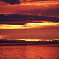 Sunrise Sekiu Washington by Tom Janca