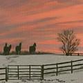 Sunrise Silhouettes by Deborah Butts