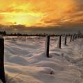 Sunrise Snow Fields by Ceri Jones