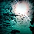 #sunrise #sun #tagsforlikes.com #tflers by Jason Michael Roust