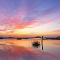 Sunrise Sunset Art Photo - I Belong by Jo Ann Tomaselli