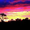 Sunrise Sunset Delight Or Warning by Robert J Sadler