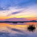 Sunrise Sunset Image Art - Lavender Lace by Jo Ann Tomaselli