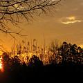 Sunrise Sunset by Sarah Houser