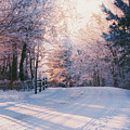 Sunrise Winter Wonderland by Parker Cunningham