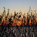 Sunrise2 by James Holt