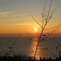 Sunrise by Cindy Marais
