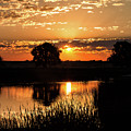 Sunrise's Crepuscular Rays by Tony Hake