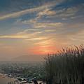 Sunrise Through The Fog by Robert Mitchell