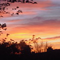 Sunset 31 by Stephanie Moore
