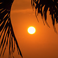 Sunset 35 by Mike Goldstein