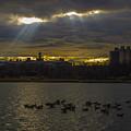 Sunset by Alexander Fuza