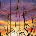 Sunset  by Alicia Doerksen
