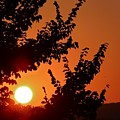 Sunset At Budapest by Hemu Aggarwal